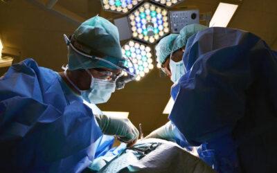Patologii 03 – Class aptent taciti sociosqu ad litora torquent