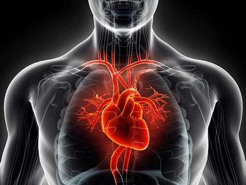 Studiu despre depistarea pacienților la risc de moarte cardiacă subită