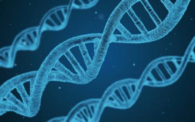 1 din 3 pacienți din clinicile de cardiologie de zi ar putea beneficia de tratament țintit în urma testării genetice de rutină