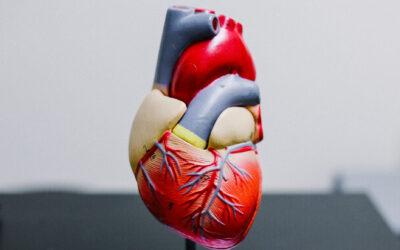 Grupuri de suport pentru pacienții cu boli cardiovasculare din Iași